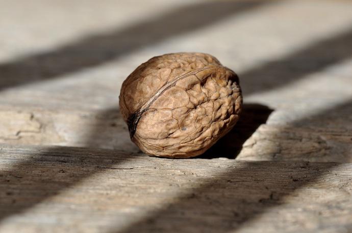 wallnut shell on wooden surface